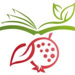 biblical wellness ministry logo